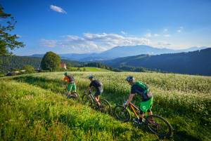 Become the Cycling Ambassador of Slovenia