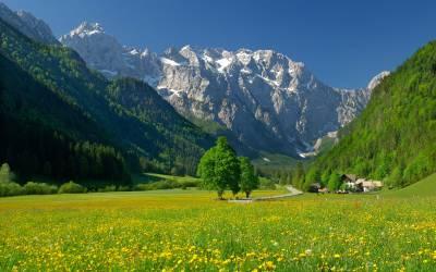 Лето в Логарской долине