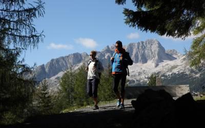 Entre las flores silvestres de la montaña - Via Alpina