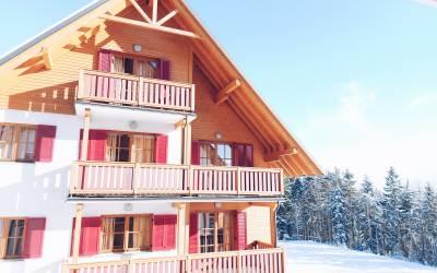 Turistični bon paket v Forest Apartments Videc***