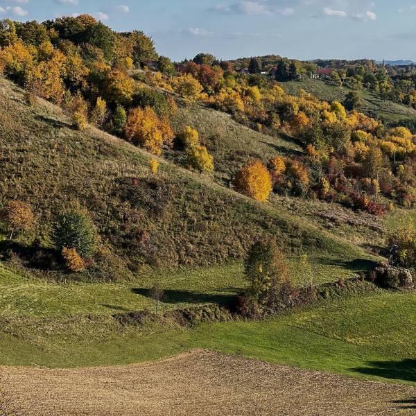 Fall edition •   vivid landscape around Šentilj  Discover the land of vineyard hills & the secrets of the lush forests.   #ifeelsLOVEnia #mojaslovenija #sloveniaoutdoor