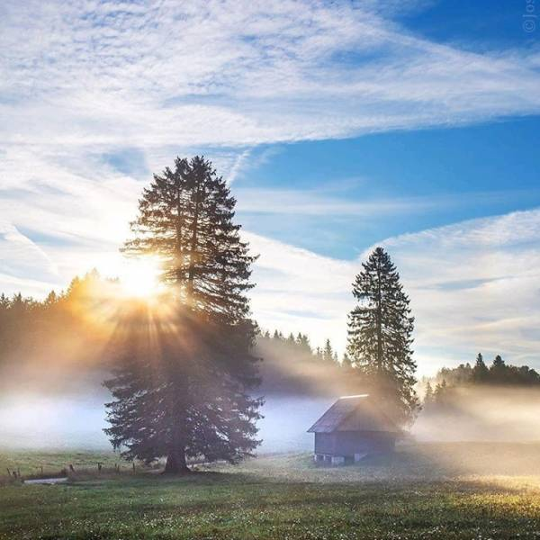 Slovenia.  Look, how beautiful - a foggy morning in a country in the heart of Europe. Landscape and sunshine make the fairytale scenery   A lovely land with