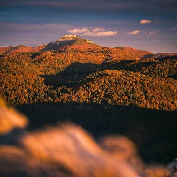 Autumn light • October with its colours   Snežnik #ifeelsLOVEnia #mojaslovenija #sloveniaoutdoor    Photo by @simonspilar.