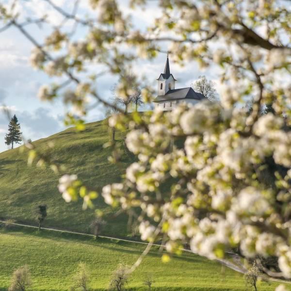 Numerous churches and monasteries in Slovenia are another reason to visit Slovenia.   Sv.Jakob  #ifeelsLOVEnia #mojaslovenija #sloveniaculture #staysafe  Photo by @gregor.raicevic.
