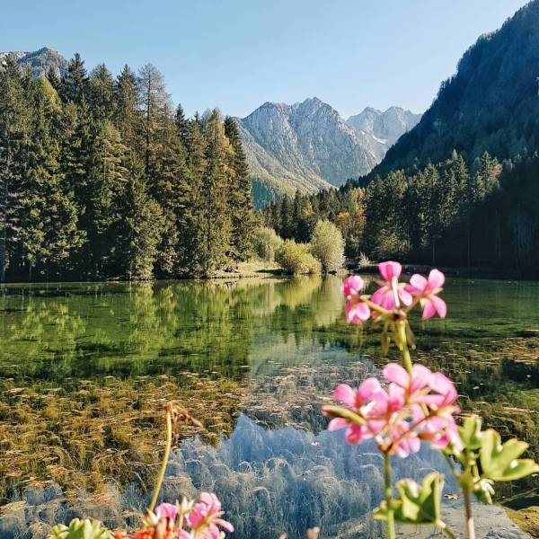 The beauty of Planšar Lake will surely allure you to make a trip to Jezersko.  But this lovely heart-shaped lake is not the only place worth visiting in the area. Among the others, you can visit the Ank's waterfalls, Jezernica spring and Ank's homestead, one of the first settlements in Jezersko, as it has remained there for more than a thousand years. ⁠ ⁠ Thank you @majalampe for sharing your photo from #jezersko with #ifeelsLOVEnia and #myway.⁠ ⁠ ⁠ ⁠ ⁠ ⁠ ⁠ ⁠ #slovenia #slowenien #plansarskojezero #plansarlake #beautifuldestinations #lonelyplanet #natgeoyourshot #outside_project #keepitwild #nakedplanet #beautiful_destinations #wonderful_places #reflectiongram #exploreourearth #visualscollective #byfolk #tlpicks #besteuropephotos #fantasticearth #globalcapture #fantastic_earth #liveadventurously #stayandwander #voyaged #awakethesoul #neverstopexploring #wildernessculture