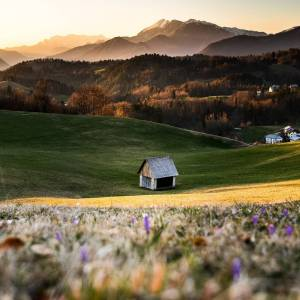 Spring is such a beautiful time in Slovenia   Thank you @nusafeltrin for sharing this lovely photo from Pečine village (Šentviška Gora Plateau).   What is your way of feeling Slovenia? Show us by tagging your photos with #ifeelsLOVEnia and #myway for a chance to be featured on our page!  #slovenia #slowenien #spring #natureaddict #roamtheplanet #photooftheday #beautifuldestinations #earthfocus #awesomeearth #wildernessculture #visualsoflife #lifeofadventure #tolmin #idrijca #cerkno  #exploretocreate #theglobewanderer #welltravelled #exploringtheglobe #happyeaster #naturelovers #planetearth #folkmagazine #liveauthentic #modernoutdoors
