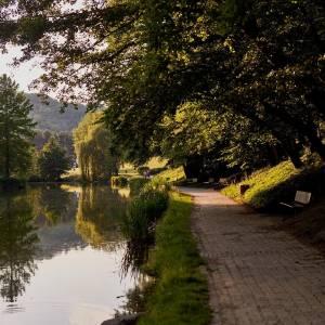 A pleasant walk in Maribor City Park #ifeelsLOVEnia #mojaslovenija #visitmaribor #sloveniaoutdoor   Photos by @ninchop.