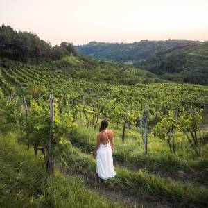 The Intiniti Wine Bliss mindful experience through the stories from Goriška Brda⭐ #SloveniaUnique  Feel the power of the Brda soil, discover the traditions of the region and taste the nearly forgotten ritual wine, inspired by the tradition of the Staroverci — the Old Believers. Learn more in the BIO link.   #ifeelsLOVEnia #naturallycurious #brda