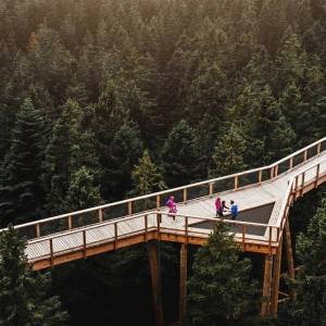 My way of learning about nature.  Have you visited the newly opened Treetop walk in Rogla already? You can take a walk 20 m above the ground and experience the forest from a new perspective. An amazing experience for all ages!  Thank you @luka.snaps for sharing your photo of @potmedkrosnjamipohorje with #ifeelsLOVEnia and #myway.     #rogla #potmedkrosnjami #treetopwalk #lovetheoutdoors #wanderlustcontest #wanderlustescapes #theglobewanderer #choosemountains #outdoorproject #TrekkingToes #mountainstones #theoutbound #takemoreadventures #theoutdoorfolk #adventureanywhere #modernoutdoors #stayandwander #wildernessculture #travellingthroughtheworld #thegreatoutdoors #visualsoflife #wanderout #getoutstayout #bravogreatphoto #capturedconcepts #timeoutsociety #diewocheaufinstagram #folkgreen