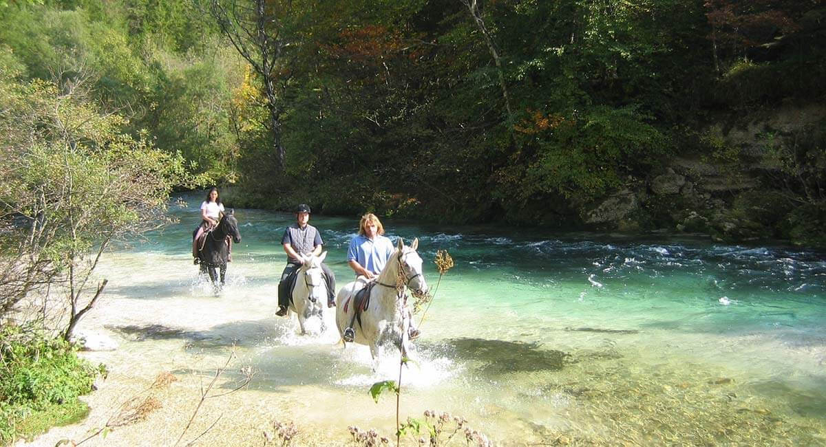 Jahanje i feel slovenia for Where to go horseback riding near me