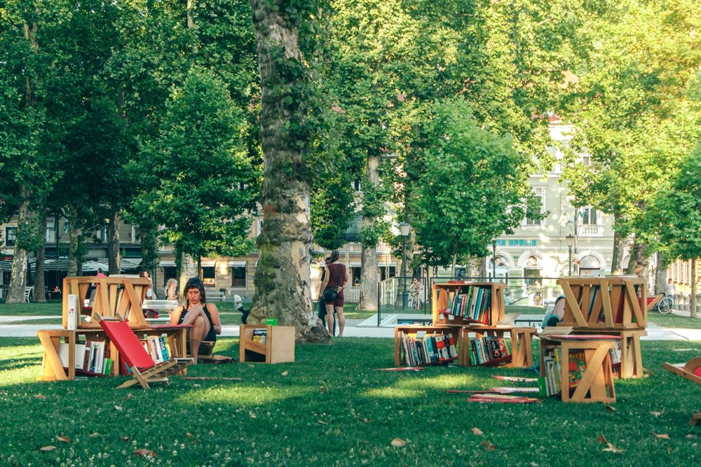 Library under Treetops