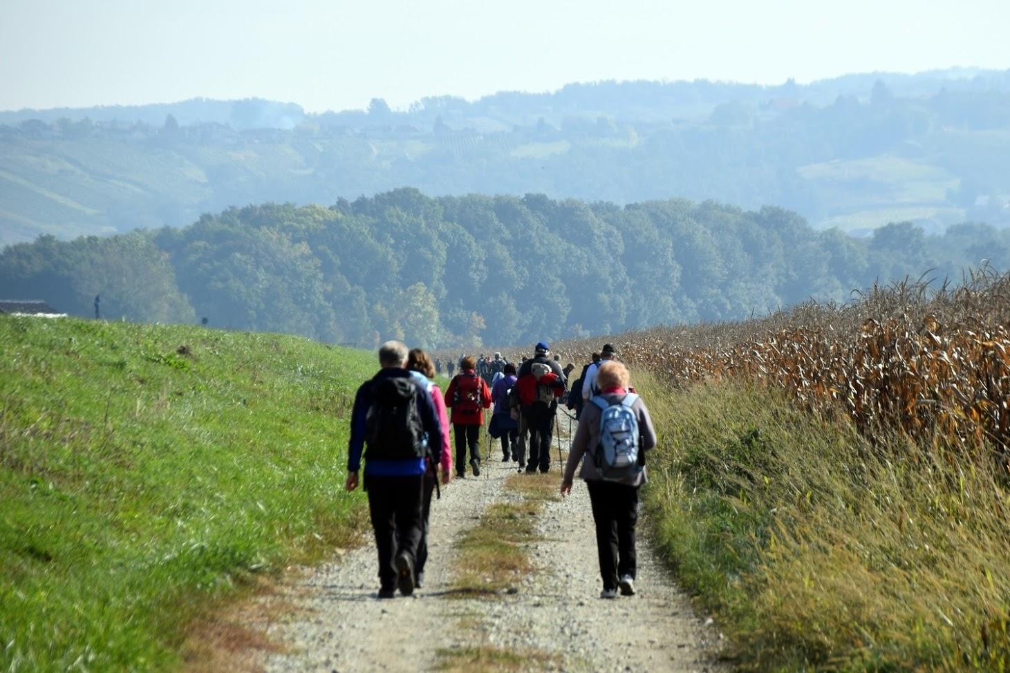 Hike along the Miško's trails