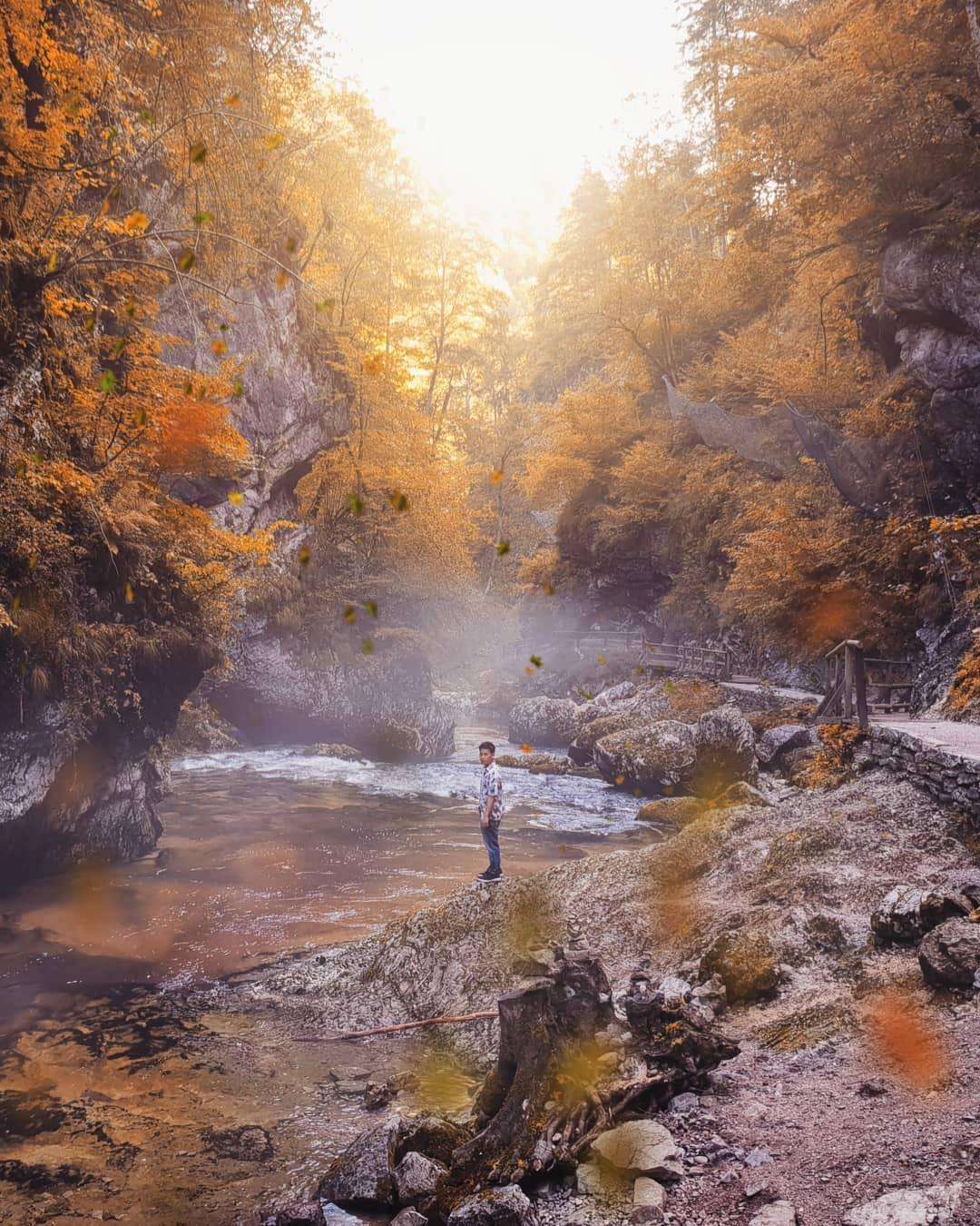 Nature, the mighty master of visual perfection. Look at this breathtaking scenery.  . This is Vintgar Gorge (soteska Vintgar) or Bled Gorge.  It is a 1.6-kilometer gorge in northwestern Slovenia in the municipalities of Gorje and Bled, four kilometers northwest of Bled. Carved by the Radovna River, it is the continuation of the Radovna Valley. ️ . When at such places - stop, rest and enjoy.  And keep them in your memory.  Thanks @travelispun for sharing your photo with #ifeelsLOVEnia.