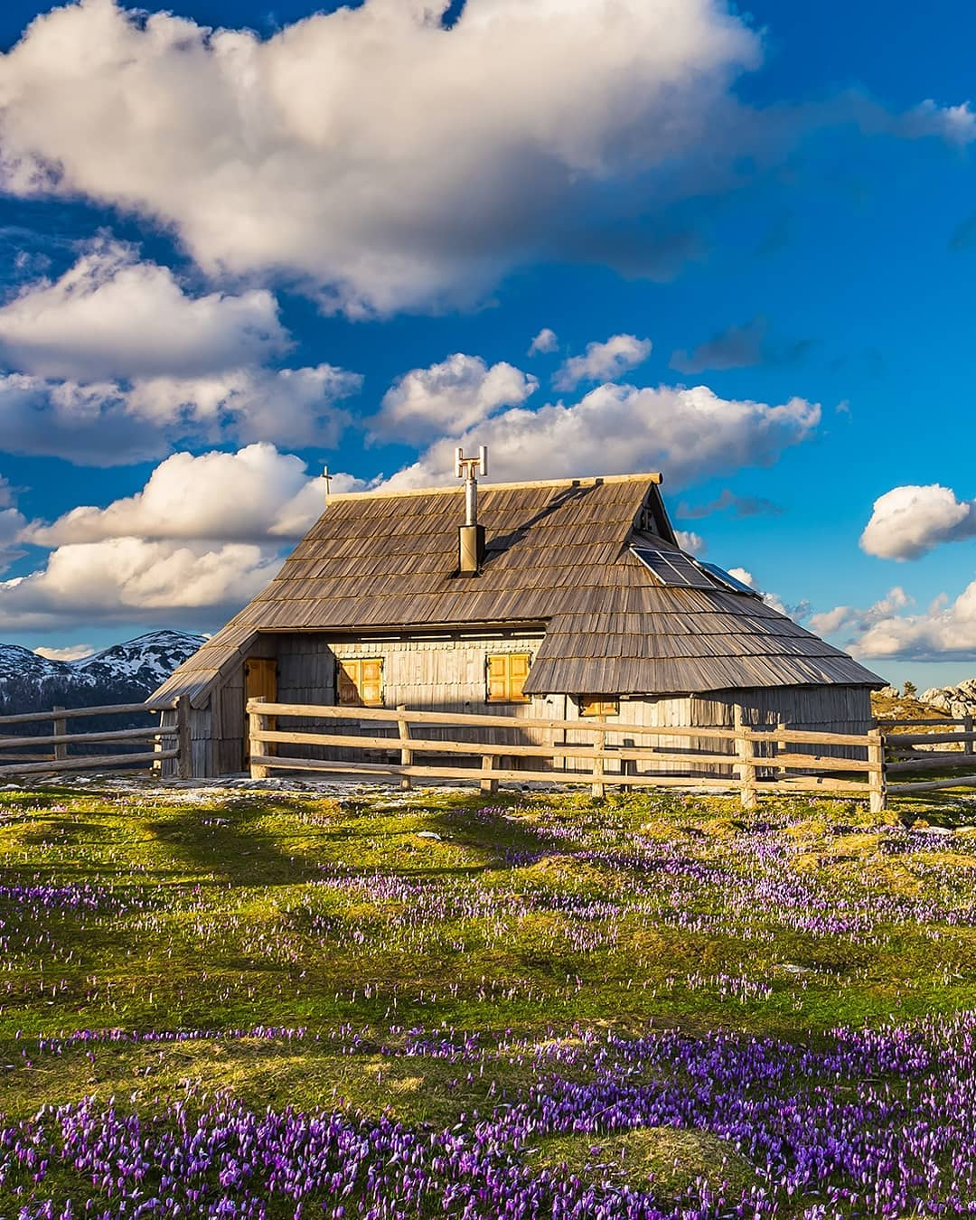 Hello spring!  Who is excited about warmer weather?  #ifeelsLOVEnia Photo by @anapogacar