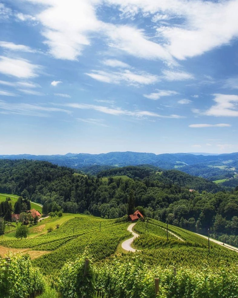 Hello sunny Saturday!  Explore the romantic sights of Slovenian Styria. Get acquainted with the typical viticultural world part of Slovenske Gorice. This route leads you to the most scenic Slovenian road through the vineyards, which is in the shape of a heart. Look, it really is ♡. . Who would you take with you to this idyllic adventure? ️ . Thanks @my_slovenia_story for sharing your photo with #ifeelsLOVEnia.