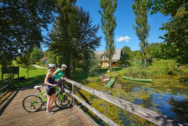 Dolenjska and Bela krajina to have new bike rental systems