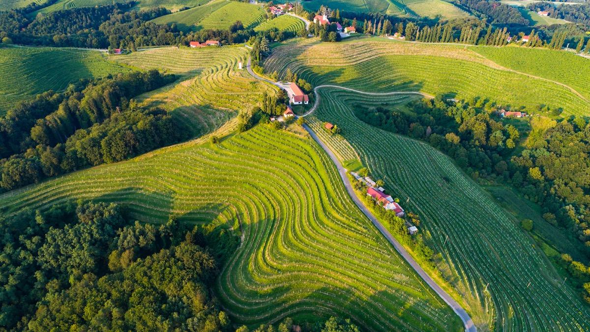 Make new memories in Thermal Pannonian Slovenia