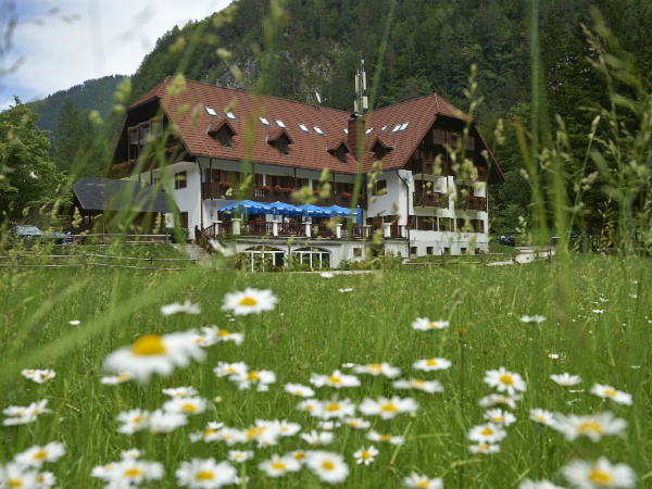 Slovenian hotel wins the Luxury Eco-Friendly Hotel of the Year Award