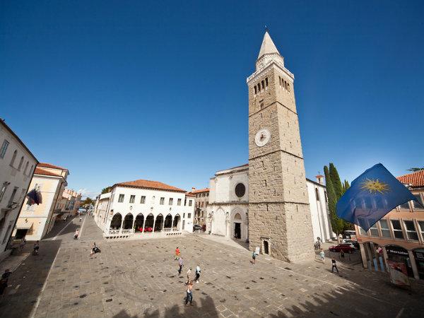 Mestna občina Koper bo sprejela Zeleno politiko in pripravila posvet za ponudnike