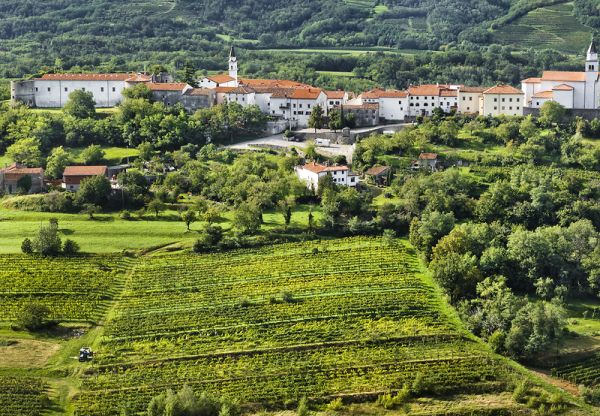 Lonely Planet lists Vipava Valley among Best in Europe