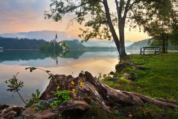 Ameriški mediji o Sloveniji zopet v presežnikih