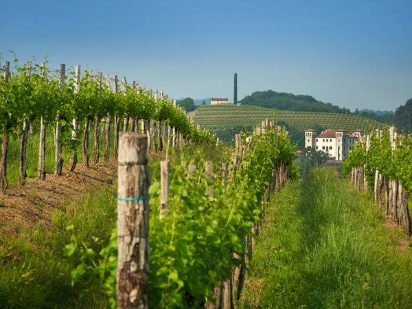 Občina Brda je nacionalni predstavnik na 16. natečaju za evropsko nagrado za razvoj podeželja za leto 2020