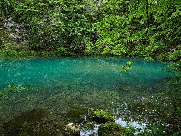 Slovenija po trajnosti na visokem 12. mestu