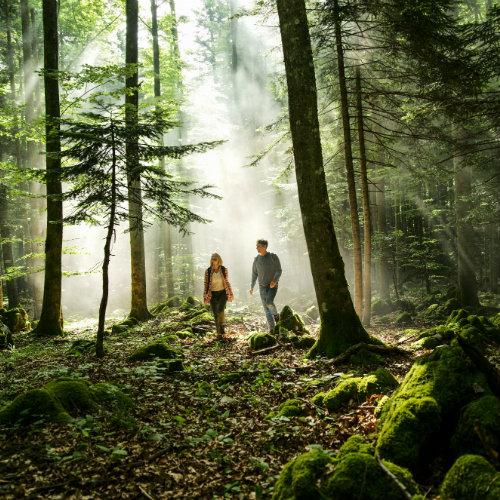 Zelena zgodba Slovenije